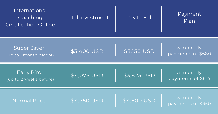 ICC Virtual – Investment Chart English