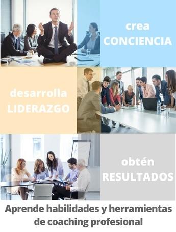LP-ICC Spanish.jpg